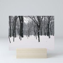 Sapporo Botanical Gardens in Winter Mini Art Print