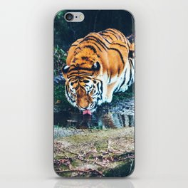 Sunrise Waterhole iPhone Skin