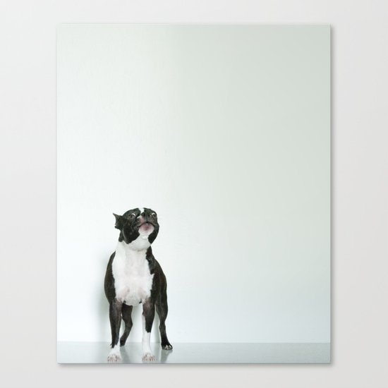 The Howler Canvas Print