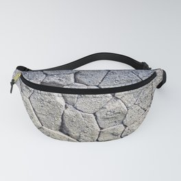 Nature's building blocks Fanny Pack