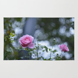 Roses and Shadows Rug