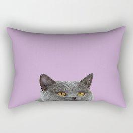 Lavender Home Decor Lilac Decoration British Short haired Cat Bag Pastel Colors Rectangular Pillow