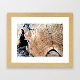 WOOD TEXTURE III Framed Art Print