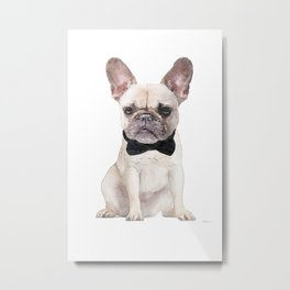 Cream French bulldog, bow tie, Frenchie, Puppy, Metal Print