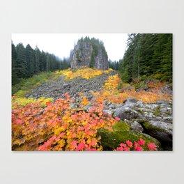 Table Rock Wilderness Landscape Canvas Print
