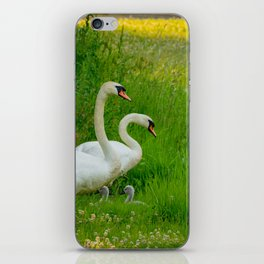 Swans Family iPhone Skin