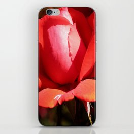 The Subject is Roses - 101 iPhone Skin