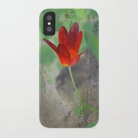 tulip iPhone & iPod Cases featuring Tulip by LoRo  Art & Pictures