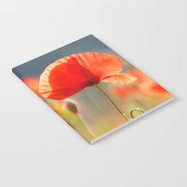 Red Poppies Flowers Notebook