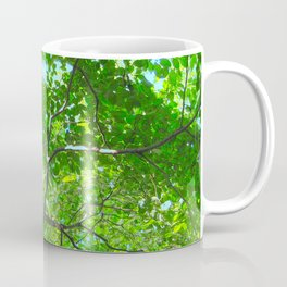 Canopy of Green, Leafy Branches with Blue Sky Coffee Mug