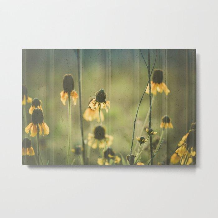 Yellow Coneflowers Summer Botanical Metal Print