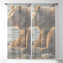 Awe Inspiring Huge Creature Chilling In Sunshine At Shoreline Ultra High Resolution Sheer Curtain