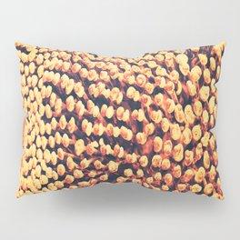 Oxidized Landscape Tangerine Pillow Sham