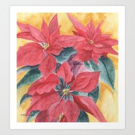Poinsettia 2 Art Print