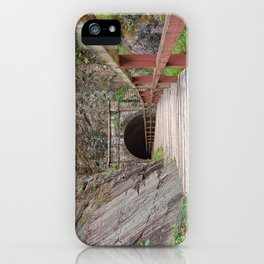 Paw Paw Tunnel iPhone Case