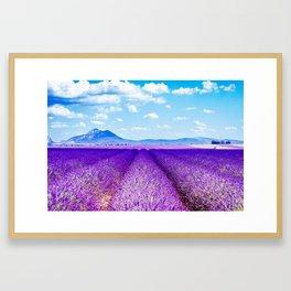Passing Provence Framed Art Print
