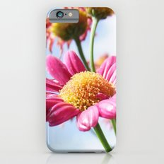 Pink Daisy Flowers iPhone 6s Slim Case