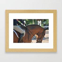 Horse Park 174 Framed Art Print