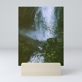 Waterfalls. Flowers. Nature. Mini Art Print