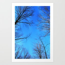 scratch the sky Art Print