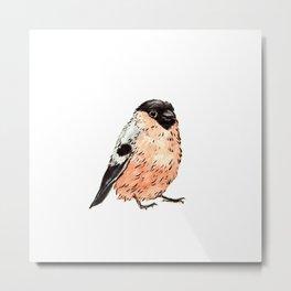 Orange and Black Bird Metal Print