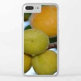 Apricots ripen on the tree. Clear iPhone Case