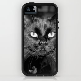 Bewitching Cat iPhone Case
