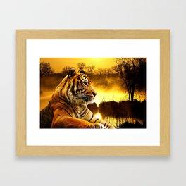 Tiger and Sunset Framed Art Print