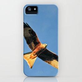 Red Kite - Bird of prey iPhone Case