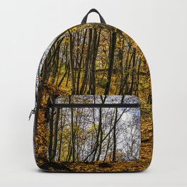 The Golden Fall Backpack