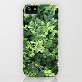 Peaceful Contemplations iPhone Case