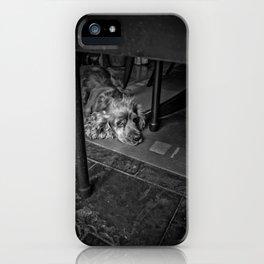 Cocker Spanial Sad Eyes iPhone Case