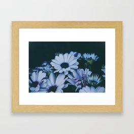 Flower Photography by Echo Grid Framed Art Print