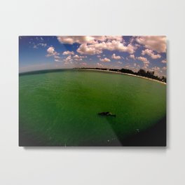 Dolphin off the Pier Metal Print