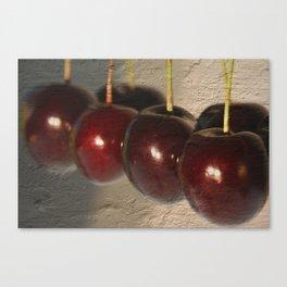 Frankish cherries Canvas Print