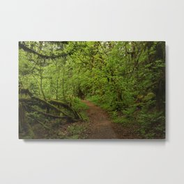 The Road to Faerie Metal Print