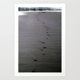 Paw Prints on the Beach Art Print