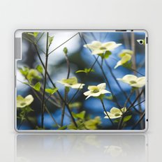 Dogwood Laptop & iPad Skin