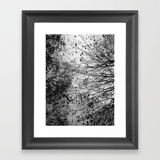 Branches Amp Leaves Framed Art Print By David Bastidas