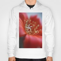 cacti Hoodies featuring Cacti Flower by Brian Raggatt