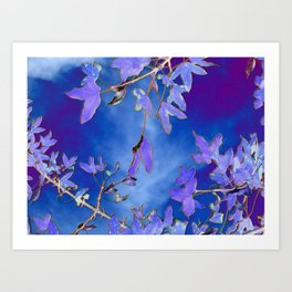 Into the Blue Art Print