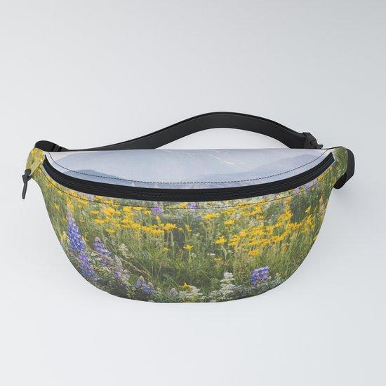 Waterton Wildflowers by admkng