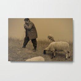 Herder   Metal Print