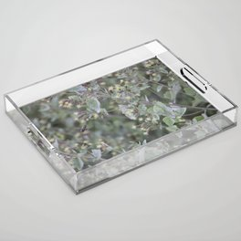 Bee Work Acrylic Tray
