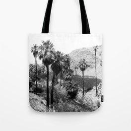 Palm Canyon near Palm Springs c.1901 Tote Bag