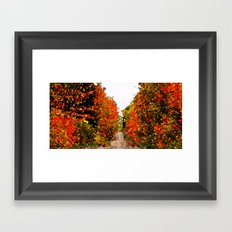 Crystalized Fall Forest Framed Art Print