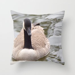 Beautiful Canadian Goose Swimming On Peaceful Pond Throw Pillow