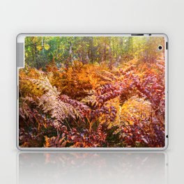 Autumn fern Laptop & iPad Skin