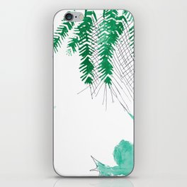 Palm tree frogs evergreen iPhone Skin