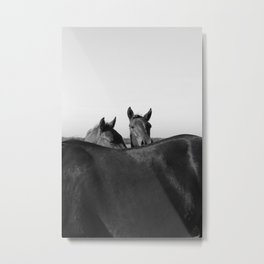 Wild Horses in Black and White Metal Print